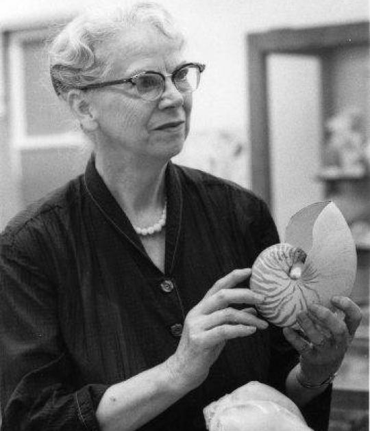 Photo of A. Myra Keen holding a seashell from the shell exhibit